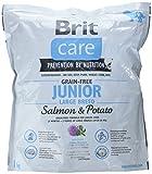 Brit Care Grain-Free Junior Large Breed Salmon & Potato, 1er Pack (1 x 1 kg)