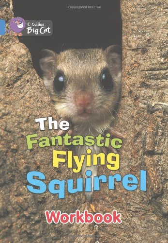 The Fantastic Flying Squirrel Workbook (Collins Big Cat)