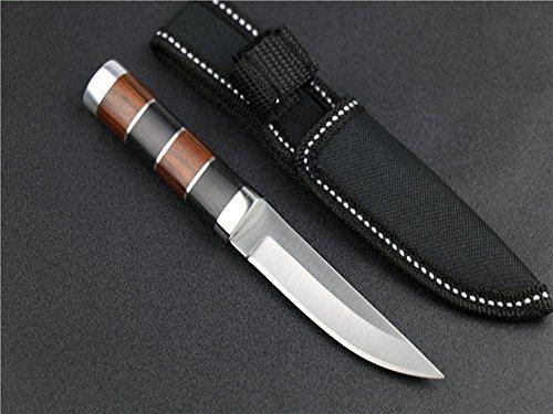 REGULUS KNIFE Hochwertige Arbeitsmesser Struktur SA18 [Parallelimport Waren] Samurai-schwert-pflege