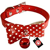 Pawzone Red Stylish Puppy and Cat Collar with Bell