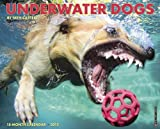 Underwater Dogs 2015 Wall Calendar by Seth Casteel (2014-06-15)