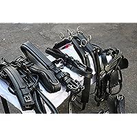 Equipride - Juego de arnés para caballos (resistente), color negro, negro, Plein