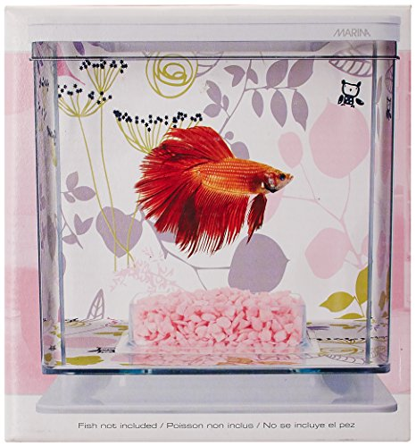 Hagen Marina Betta Aquarium-Starter-Set, Flora -