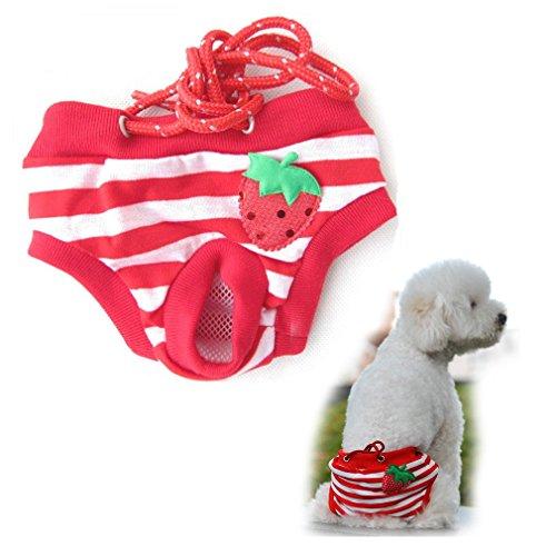 Bild: Hundeschutzhose für Hündinnen Hundewindeln Inkontinenz Rüden Material waschbar und Umfang 1555cm einstellbar XL