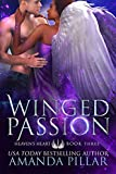 Winged Passion (Heaven's Heart Book 3)