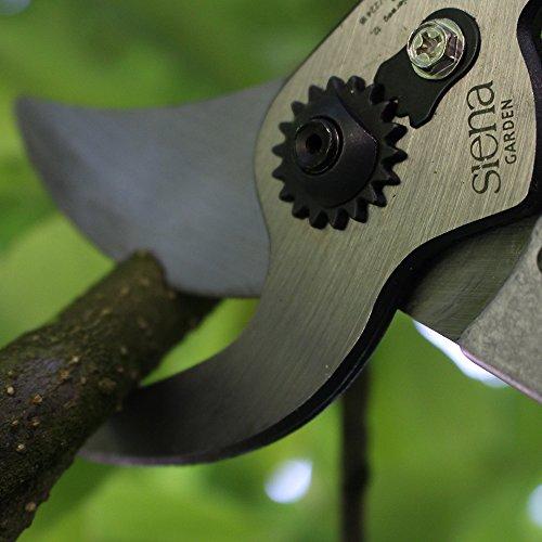 siena-garden-premium-bypass-astschere-70cm-aluminium-209109-4