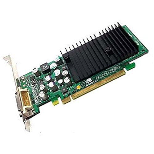 128 Mb Ddr2-pcie-grafikkarte (Grafikkarte HP NVIDIA P2830x 8702Quadro NVS285DDR2SDRAM 128MB PCIe DMS-59)