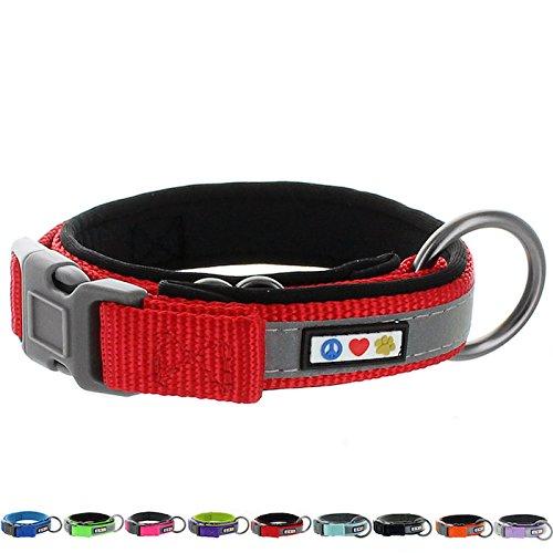 Pawtitas Collar para Perros Ajustable