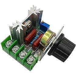 PWM AC de Controlador de velocidad del Mmotor 2000 W ajustable, regulador de voltaje 50-220 V