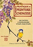 carnet pratique de peinture chinoise 200 motifs ? reproduire ?tape par ?tape de dwight jane 2007 reli?