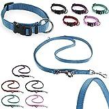 CarlCurt Classic-Line Hundehalsband & Hundeleine im Set, aus strapazierfähigem Nylon, XS 22-35cm & XS 1,90m, hellblau