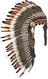Y18 bereit für Halloween. Medium drei Farben Braun, Feder-Kopfschmuck (36 Zoll lang). Stil der Ureinwohner Amerikas.