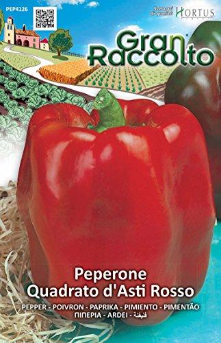 Hortus 40PEP4126 Gran Raccolto Peperone d'Asti, Quadrato, Rosso, 13x0.4x20 cm