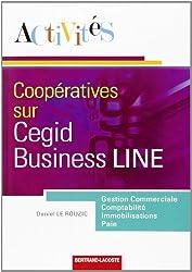 Activités sur le progiciel Cegid business line