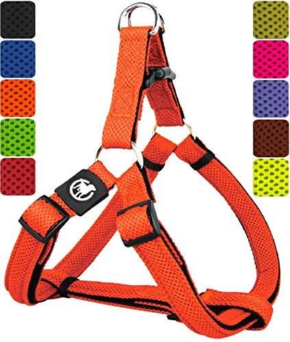 DDOXX Hundegeschirr Step-In Air Mesh | für große, mittelgroße, mittlere & kleine Hunde | Geschirr Hund | Katze | Brustgeschirr | Softgeschirr | Orange, S - 2,0 x 45-63 cm