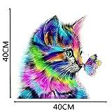 Binggong 5D DIY Diamant Malerei Kreuzstich Harz Dekoration Wohnzimmer Schlafzimmer Farbige Katze Malen nach Zahlen Kits 20X20cm/30x30cm/40x40cm (40x40cm, Mehrfarbig)