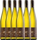 6er Vorteilspaket - Sauvignon Blanc trocken 2017 - Ellermann-Spiegel | trockener Weißwein | deutscher Sommerwein aus der Pfalz | 6 x 0,75 Liter