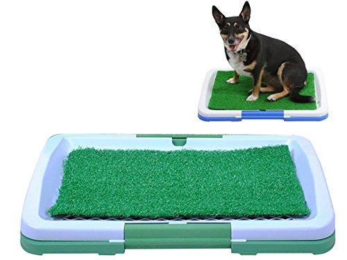 Welpentoilette Hunde Welpen Wc Hundeklo Haustiermatte Welpen Hundeabtropfschale NEU #922