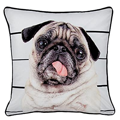 Catherine Lansfield Home Pug Life Piped Edge Cushion Cover, Multi, 43 x 43 Cm - inexpensive UK light store.
