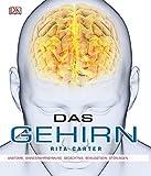 Das Gehirn: Anatomie, Sinneswahrnehmung, Gedächtnis, Bewusstsein, Störungen - Rita Carter