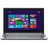 MEDION AKOYA E1317T (MD 98707) 25,6 cm (10,1 Zoll) Netbook (AMD A4-1200, bis 1 GHz, 4 GB RAM, 500 GB HDD, HD 8180, Win 8) titan