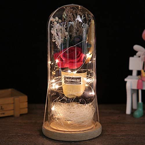 Wingbind Getrocknete Blume & Rose in Glaskuppel mit LED-Licht, Blume Bell Cloche Jar Nachttischlampe Geschenke zum Valentinstag Jubiläum Geburtstag Hochzeit -
