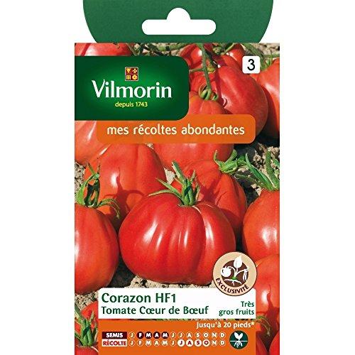 VILMORIN - Sachet Petits Modèles - Tomate coeur de boeuf corazon