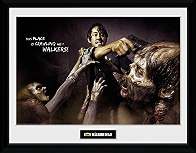 GB Eye LTD, The Walking Dead, Glenn Attack, Photographie encadrée 30 x 40 cm