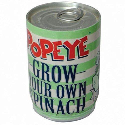 the-popeye-spinach-tin-can-with-earth-and-spinach-seeds