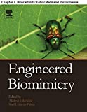 Engineered Biomimicry: Chapter 7. Bioscaffolds: Fabrication and Performance