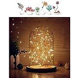 Mucher Verre Dôme lampe de Bell Jar Dôme Bamboo base Affichage chaîne USB LED...