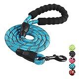PoJu Hund Pull Gürtel, reflektierende Multicolor Runde Seil Hundeleine Hund Kette Dog Pull Gürtel Heimtierbedarf Komfortable Griff mittlere und große Hunde (Color : Blue)