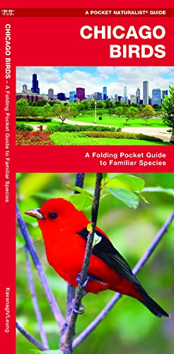 Chicago Birds: A Folding Pocket Guide to Familiar Species in Northeastern Illinois (Pocket Naturalist Guide Series)