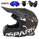 Erwachsener Motocross-Helm Professioneller Jugend-Motorradhelm ATV-Rollerhelm D.O.T Zertifiziert mit...