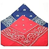 2 BANDANAs 1 navy blue 1 red PAISLEY SCARVES