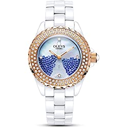 Lady ceramic/French romantic watches/Simple casual watches-H