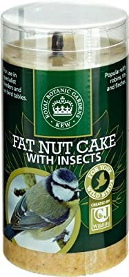 Kew Wildlife Care Collection 500ml Fat Nut Cake with Insects Tube from CJ Wildbird Foods Ltd