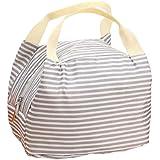 Malloom® Pranzo Borsa Termico Isolata totalizzatore Portatile Picnic Borsa Stoccaggio Lunchbox Cerniera (Grigio)