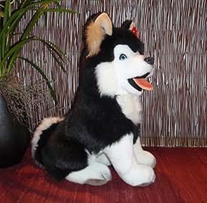 Husky malamute schlittenhund noir et blanc 50 cm *pLÜTI peluche
