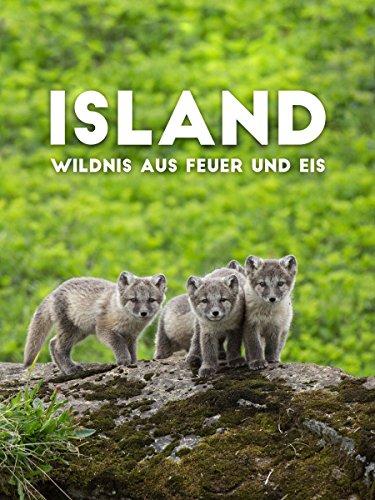Island - Wildnis aus Feuer und Eis
