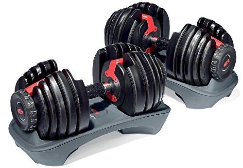 bowflex-selecttech-paire-dhaltres-2-x-24-kg