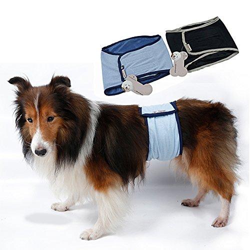 Pee Wee Hose (s-lifeeling waschbar Stecker Hund Windeln Sanitär Stecker Hund Displayschutzfolie Panty groß Hose Wrap)