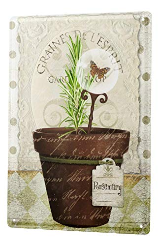 St574ony Metal Sign 12x16 Inches Tin Sign Metal Plate Poster Plaque Flower Shop Flower Pot Rosemary Butterfly