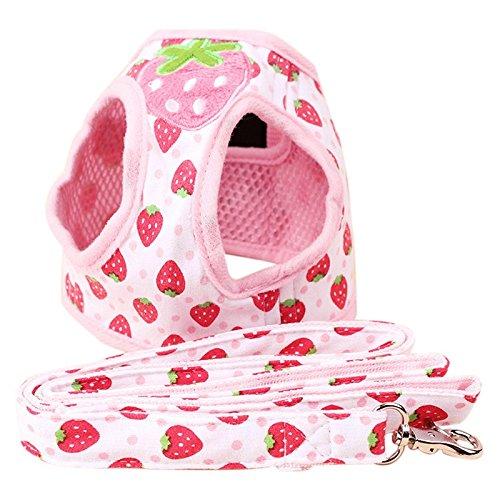 Strawberry Print Weicher Stoff Schritt in Weste komfortablen Mesh Hundegeschirr für kleine Hunde Lieferung mit passenden Leine lushpetz