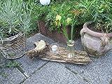 Windlicht und Vase in einem natürlichen Holzstück (Nr. 2)