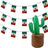 Juego de accesorios para fiestas mexicanas (10 m de banderines y cactus hinchable de 0,9 m)