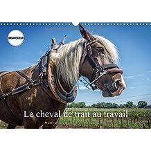 Le cheval de trait au travail : Exemples d'utilisation du cheval de trait. Calendrier mural A3 horizontal