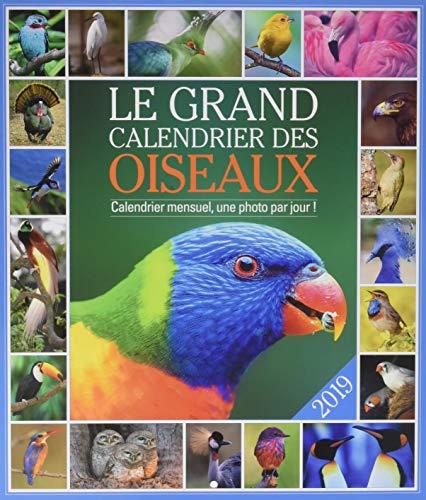 Das große Kalender der Vögel 2019