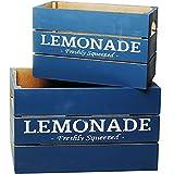 Unbekannt 2 TLG. Set _ Deko Holz Kisten / Holzboxen -  Vintage Retro - Petrol weiß - Lemonade  - groß - mittel - klein - Holzkiste - Utensilo - Aufbewahrungs-Kiste / ..