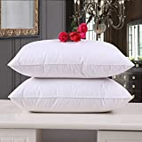Cloth Fusion Microfiber Pack of 2 Plain Cushions - (24 x 24) Inches, White